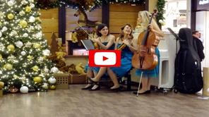 jazzband stuttgart spielt live